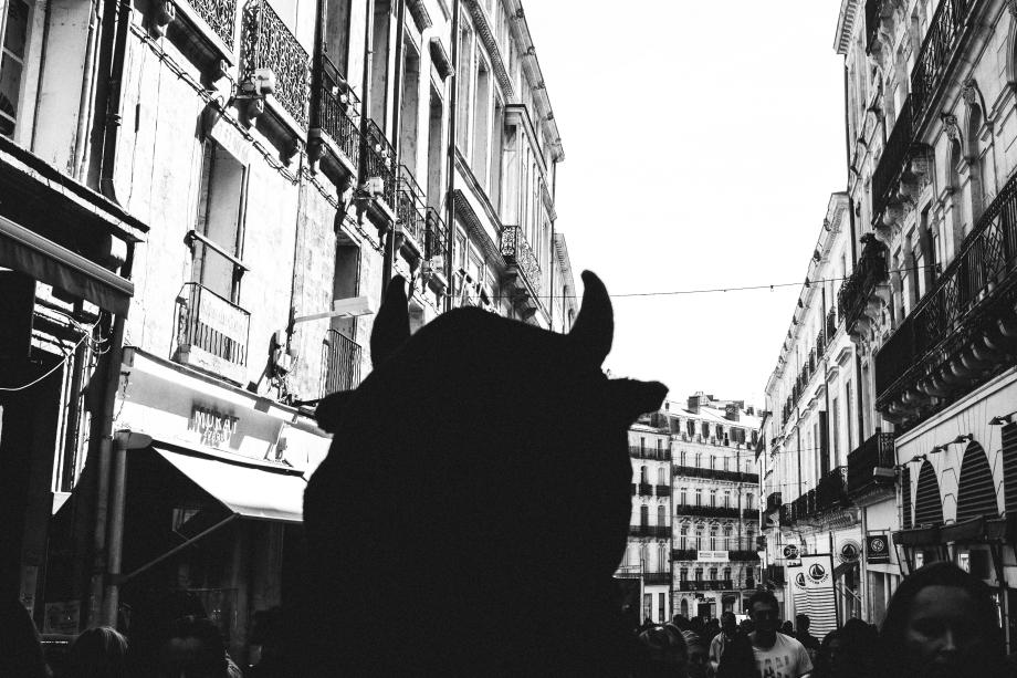 street-7.jpg
