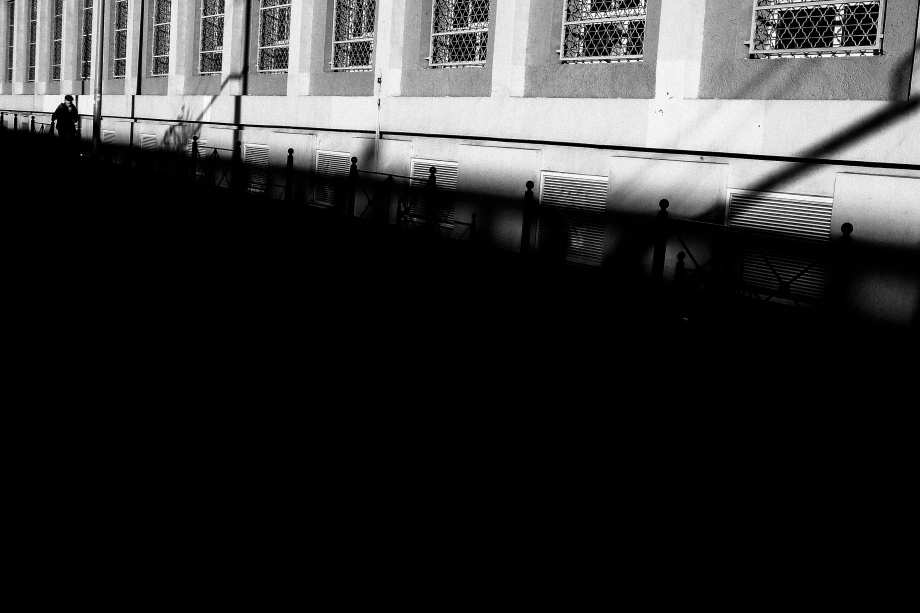 dailywalk-11