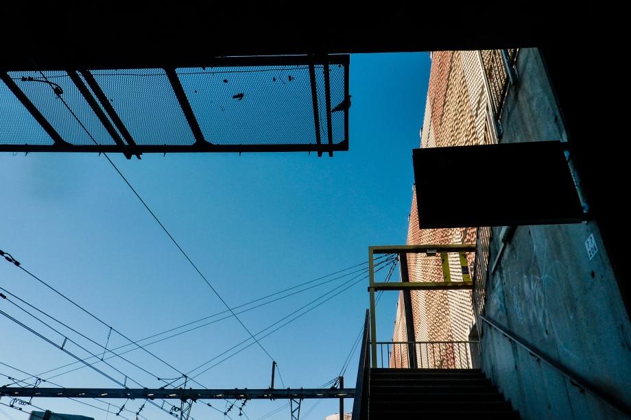 dailywalk-2.jpg