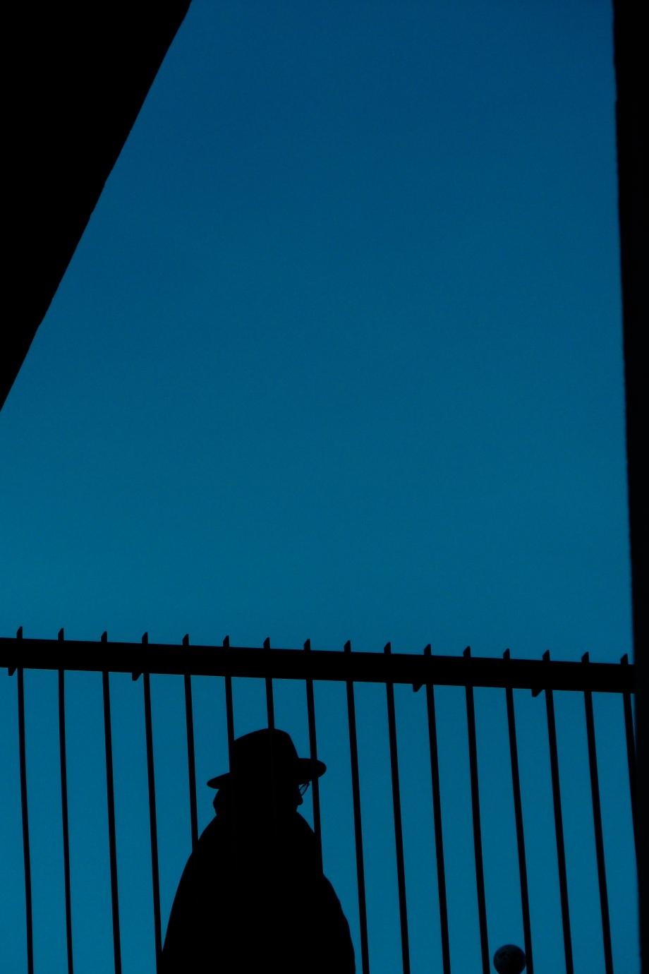 dailywalk-36.jpg